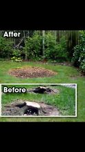 Affordable stump grinding and tree removal up to 5 meters Crestmead Logan Area Preview