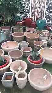 Pots 20% Off Greenvale Hume Area Preview