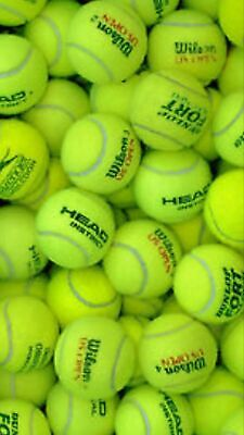 15 Used Tennis Balls For Dogs In Great Condition Clean & Pet Friendly Ex Match