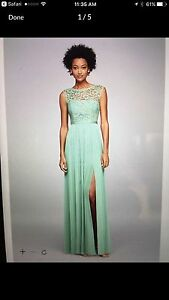 Gorgeous Brand New Mint Green Gown, Size 6