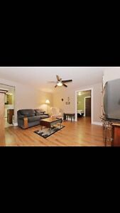 GORDON HEAD suite one room available