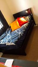Dark brown IKEA Malm single bed with mattress Woolooware Sutherland Area Preview