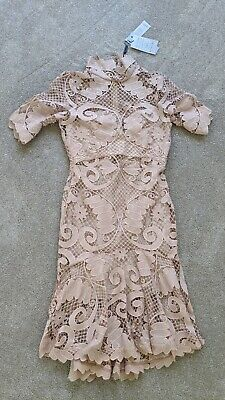 $650 NWT THURLEY Babylon Midi Lace Floral Crochet Guipure Nude Dress US 8 AU 12