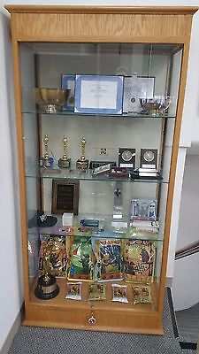 Waddell Lighted Display Case Showcase