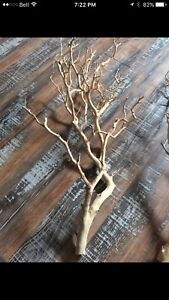 Mariage Wedding  Decor Rustique Manzanita/Manzanite Branches