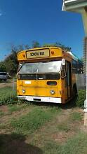 1981 man bus Townsville City Preview