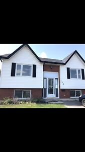 Four Bedroom Entire House For Rent- March 1st 2019