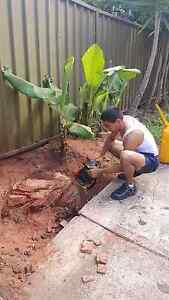 Tree cutter Matraville Eastern Suburbs Preview