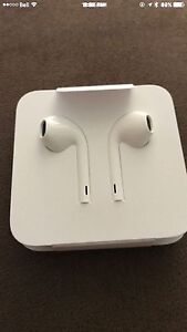 iPhone ear buds (wired)