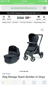Amazing Peg Perego Stroller, chair, basinette and car seat !