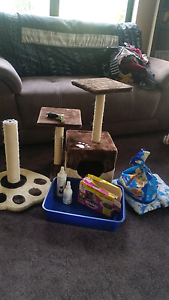 ASSORTED CAT GOODS- house, scratch post, food, brush, sprays Bassendean Bassendean Area Preview
