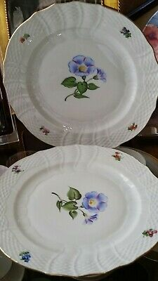 "(2) Herend ""FLOWERS OF BERMUDA"" Morning Glory 11"" Dinner Plates PAIR MINT!"