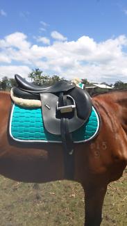 Wintec 500 close contact saddle
