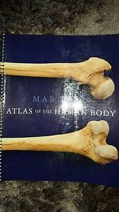 Martini's Atlas of the Human Body. Martini, F. Woody Point Redcliffe Area Preview