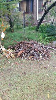 Free firewood. Already cut to size.  Bracken Ridge Brisbane North East Preview