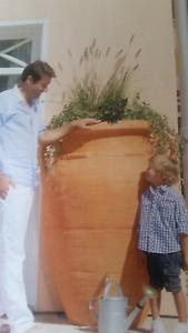 Pot plants /Stylish rain water tanks. Wurtulla Maroochydore Area Preview