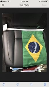 World Cup car flags