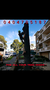FREE QUOTES,FREE PROFESSIONAL ADVICE Lane Cove Lane Cove Area Preview