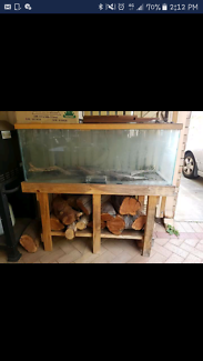 Fish / frog tank and stand