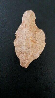 Tip Aterienne Paleolithique Middle Prehistory Sahara Flint Ws