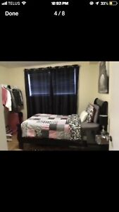 All inclusive furnished 1 bedroom on DAL campus