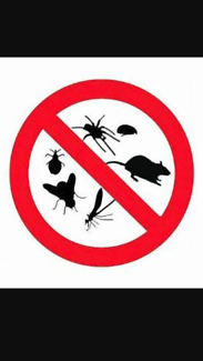 Quality Pest Control Services from $120, fully guaranteed
