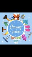 DO YOU NEED A HOME/OFFICE CLEANER?