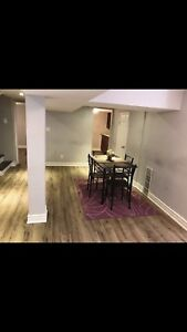 Stunning well furnished renovated Basement apt
