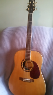 Ashton acoustic guitar model D65S