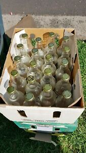 Home Brew Bottles Free