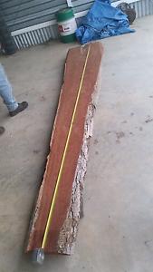Hard wood slab, iron bark. Gympie Gympie Area Preview