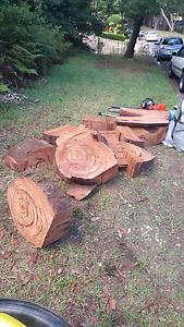 Fire wood hard hard wood Glendenning Blacktown Area Preview