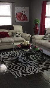 Mirror table and zebra carpet