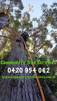 Community Tree Services -  Christmas Special 10% OFF our quoted price!