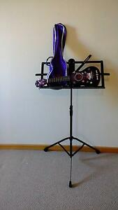 Gypsy Rose Ukulele with bag and music stand Pascoe Vale Moreland Area Preview
