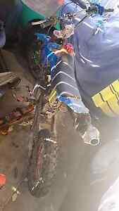 125cc pit bike  thumpster Negotiatebel Daisy Hill Logan Area Preview