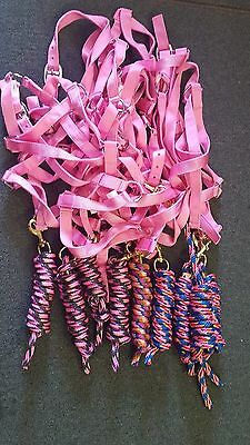Full Size (Light Pink) Nylon Horse Halter With Matching Troyer Lead Rope