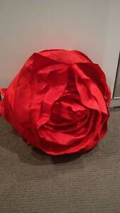 Red Rose Cushion Maryland Newcastle Area Preview