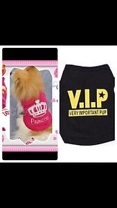 Princess X small, vip tops puppy Bankstown Bankstown Area Preview