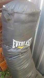 Evarlast punching bag