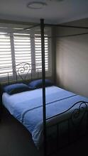 Four Poster Wrought-Iron Double Bed East Maitland Maitland Area Preview