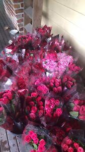 Roses fresh