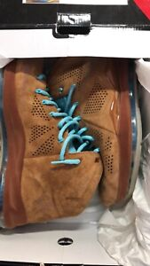RARE NIKE LEBRON 10 EXT CORK Cannon Hill Brisbane South East Preview