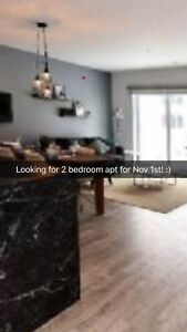 Small family looking for 2 bedroom apt for Nov 1st