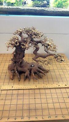 Aquarium Driftwood Bonsai Tree for Moss(VN_22)