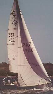 Careel 18 Sail 357 Marcoola Maroochydore Area Preview
