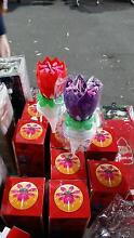 toys music play candles lotus tulip birthday business option Revesby Bankstown Area Preview