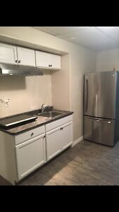 Full Basement@$700@Includes Everything@Downtown