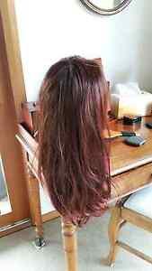 Lady's wig Cobargo Bega Valley Preview
