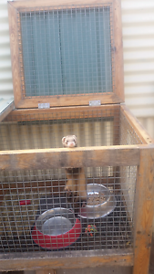 Large cage for sale Lockleys West Torrens Area Preview